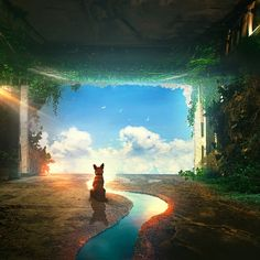 Download A Lonely Dog 2560 X 1440 Live Wallpaper Engine Free Fascinating
