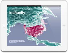 Apple - iPad - Diseño