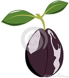 Image representing a cartoon plum. A nice idea that can be used in projects about this fruit, but also for decorating t shirts or other