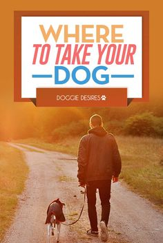 Where to take your dog >> http://doggiedesires.com/where-to-take-your-dog/