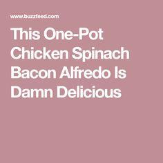 This One-Pot Chicken Spinach Bacon Alfredo Is Damn Delicious