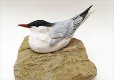 Marine Conservation Calendar 2015, prize donated by Karen Fawcett http://www.artdonor.org/