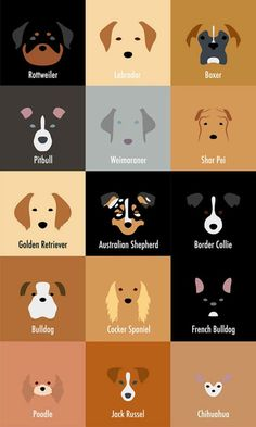 These Minimalist Dog Breed Illustrations Are So Spot-On Even Your Dog Can't Deny It - BarkPost