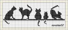 gatos_preos_barra.jpg (800350)