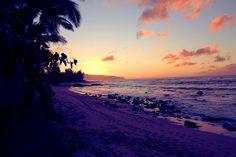 hawaii...can you say paradise?