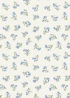 FLO10.4 - Bluebells on cream