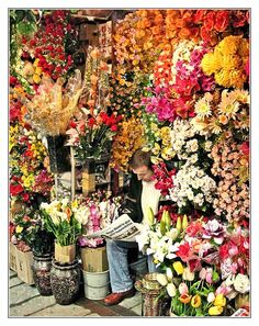 Plastic Flowers Seller  http://pixdaus.com/plastic-flowers-seller-flowers-people/items/view/18759/