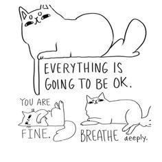 What the cat said… Ommmmmm