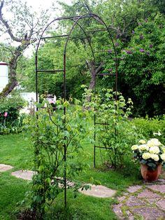 Garden Arches, Terrace Garden, Garden Gates, Garden Art, Diy Arbour, Vegetable Garden Design, Rustic Gardens, My Secret Garden, Back Gardens