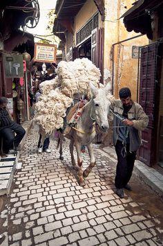 Así transportan todas las mercancías por la Medina de Fez