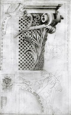 Corinthian Capital for the Corinthian Villa, Regents Park. Drawn by Francis Terry. Pencil on tracing paper. Exhibited at the RA in 2002.