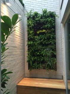 Living/vertical wall garden by the balcony gardener london  Small space gardens
