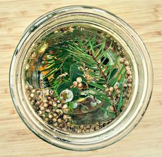 How to make infused winter gin, a lovely herbaceous brew made with botanicals, just in time for New Years! From Wild Drinks and Cocktails book by Emily Han.