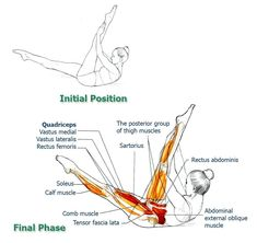 Abdominal Exercises for Spinal and Core Movement and Stabilization: Exercise 5 –Stretching the Hamstring - The Health Science Journal