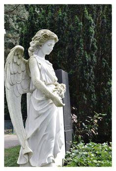 gefunden auf dem Ohlsdorfer Friedhof in Hamburg - angel