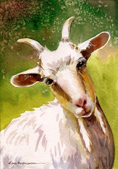 Goat, watercolor by Kim Attwooll - Funmey Goat Paintings, Animal Paintings, Animal Drawings, Art Drawings, Watercolor Pictures, Watercolor Animals, Watercolor Art, Farm Animals Pictures, Goat Art