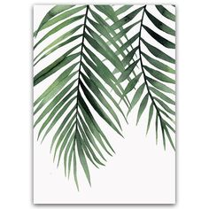 Scandinavian Style Canvas Poster and Print Green Plant Leaf Wall Art Painting Nordic Decoration Pictures Modern Home Decor Leaf Wall Art, Leaf Art, Canvas Wall Art, Canvas Prints, Art Prints, Bedroom Canvas, Watercolor Plants, Watercolor Leaves, Watercolor Art