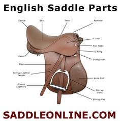 The Parts of an English Saddle