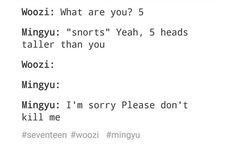 Me: [Hands Woozi a guitar] Beat 'em. (I'm shorter than Jihoon so that insults me as well)