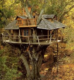 Tree house in a tree top by the company La Cabane Perchee.