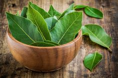 Amazing bay leaf benefits abound in healing oils and teas. Bay is a 'salt buster' herb. Add bay for flavoring, use less salt. Growing Herbs At Home, Best Herbs To Grow, Bay Leaf Benefits, Wasp Repellent, Types Of Herbs, Bay Leaves, Herbs Indoors, How To Make Tea, Insomnia