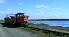 Moorbahnfahrt mit dem Seelter Foonkieker in Ramsloh. Erlebnisurlaub direkt an der Moorerlebnisroute. www.moorerlebnisroute.de