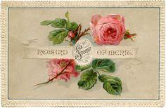 Vintage Shabby Roses Card! (via Bloglovin.com )