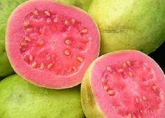 Goiaba Guave