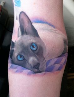 Cat tattoo amazing detail. Not my cup of tea, but amazing!