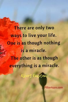 There are only 2 ways to live your life.  One is as though nothing is a miracle. The other is as though everything is a miracle_ Do you believe in miracles? #einsteinmiraclequote #alberteinsteinmiraclequote #alberteinsteinquoteonmiracles #alberteinsteinquotesaboutlifemiracle #einsteineverythingisamiracle #alberteinsteineverythingisamiracle #einsteinquoteeverythingisamiracle #everythingisamiracleeinstein #everythingismiraclealberteinstein Albert Einstein Thoughts, Scientist Albert Einstein, Albert Einstein Quotes, Hi Quotes, Need Quotes, Miracle Quotes, Nobel Prize In Physics, Philosophy Of Science, Modern Physics