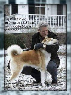 Animal Kingdom, Travel Inspiration, Husky, Best Friends, Teaching, Pets, Movies, Animals, Life