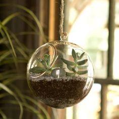 Terrain Glass Hanging Orb #shopterrain