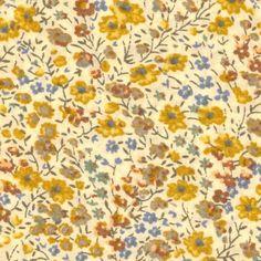 phoebe yellow2