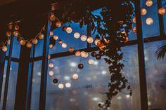 PLaces to go  |  Coffee, Coffee Shop, Edinburgh, Scotland, UK, Artisan Coffee, Cozy, Window, Cup, Lights, Cake, Photography, Daniel Farò, Handmade, Lovely