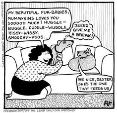 Off the Leash - A Doggy Blog - Page 3 of 30