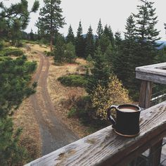 a cup of coffee, a cabin in the middle of the woods. Pure, simple, beauty.