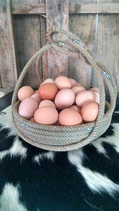 Lariat Rope Basket by RanchStudioArtworks on Etsy https://www.etsy.com/listing/227730994/lariat-rope-basket