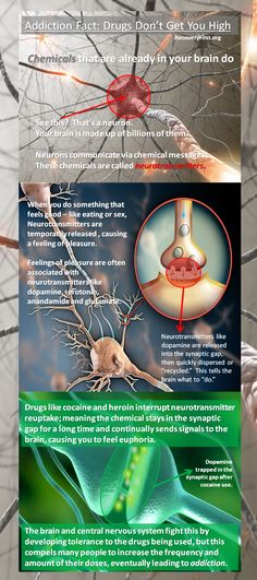 "Addiction Fact: Drugs don't get you high directly - brain chemicals do. It's the way drugs interact with chemicals that are already in your brain called neurotransmitters that cause feelings of euphoria and a general state of being ""high."" But as it turns out, it's the brain's way of fighting off these effects that eventually causes severe neurological addictions."