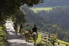 Horse ride with the #HaflingerHorses ♥  | © Frieder Blickle