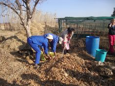 Jabulani Foundations For Farming Training - Morester Child and Youth Care Centre, KZN (South Africa) Home Grown Vegetables, What You Eat, Food For Thought, Farming, South Africa, The Help, Centre, Healthy Living, Foundation