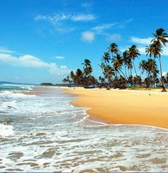 Hit the beach in Goa! Book cheap Goa flights with Globehunters here > http://www.globehunters.com/Flights/Goa-Flights.htm