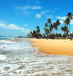 Hit the beach in Goa! Book cheap Goa flights with Globehunters here > http://www.globehunters.com/Flights/Goa-Flights.htm
