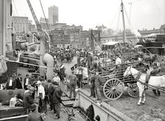 c.1905 ::     Unloading bananas, New York Port