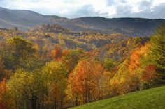 Virginia - George Washington and Jefferson National forests