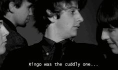 Ringo was the cuddly one