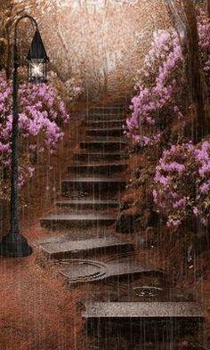 beauty in the rain...