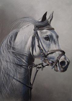 next horse by PASTELIZATOR.deviantart.com on @DeviantArt