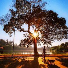 Parque Ibirapuera, São Paulo - 20 destinos mais compartilhados no Instagram;