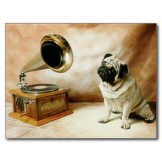 Rca-Mops-Hund Postkarten