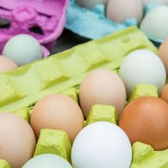 The decision to refrigerate eggs or leave them on the counter should be made based on if you've washed your farm fresh eggs or not. Learn more about egg refrideration today! Chicken Eating, Chicken Feed, Chicken Eggs, Broken Egg, Laying Hens, Eating Eggs, Animal Nutrition, Chickens Backyard
